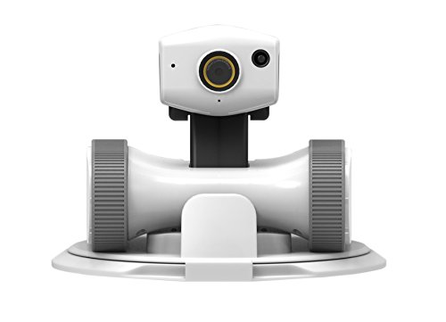 iPATROL Riley Home Monitoring Robot