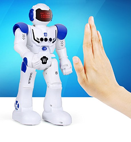 Hi-Tech Wireless Remote Control Robot Interactive RC Robot