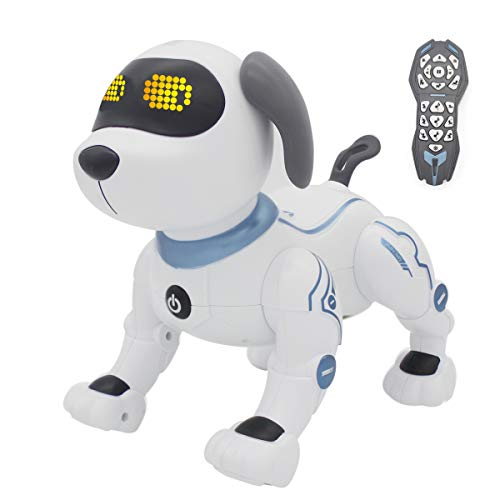 Fisca RC Dog
