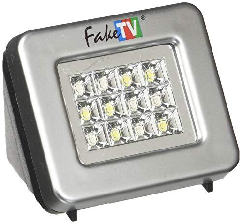 Fake Tv FTV - 11