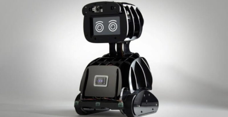 Best Personal Assistant Robot