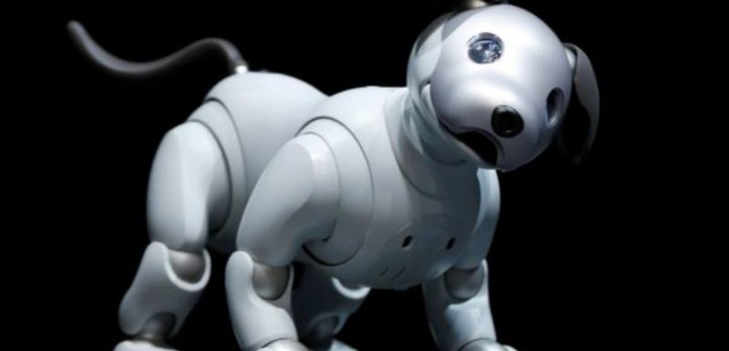 Best Robot Dogs 2020- Buyer's & Review Guide