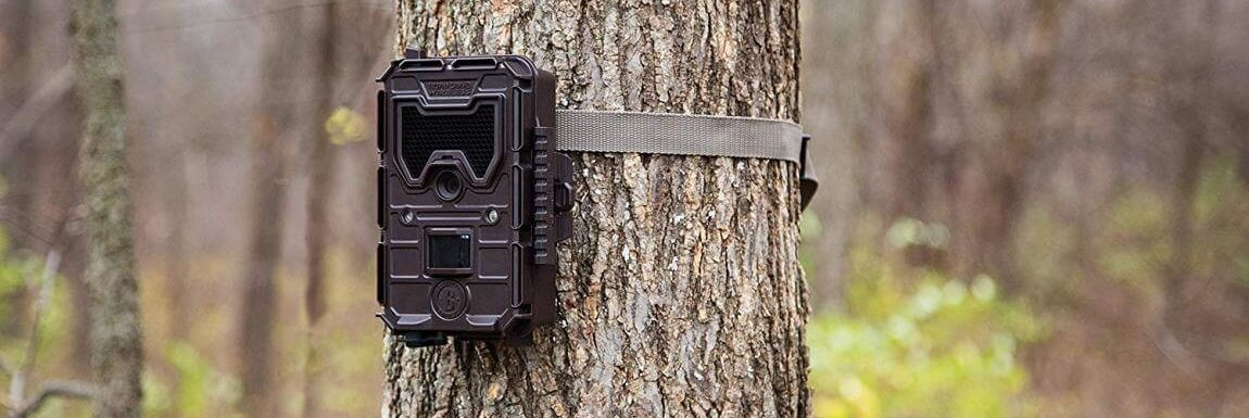 Best Wireless Trail Cameras 2021 – Reviews & Buyer's Guide
