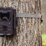 Best Wireless Trail Cameras 2021 - Reviews & Buyer's Guide