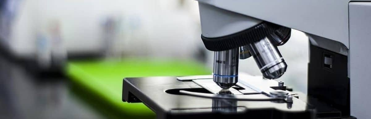 How To Use A Microscope Properly?