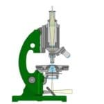 Microscope Parts And Functions: An Overview