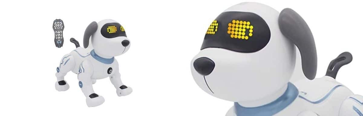 Fisca Remote Control Dog- Honest Review